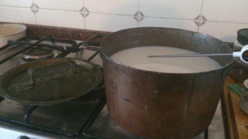 preparazione cagliata con latte crudo