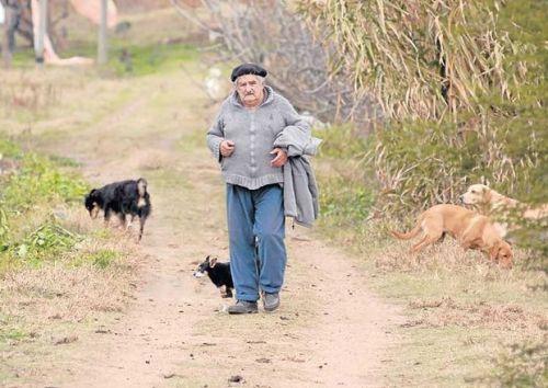 Pepe Mujica Presidente  Uruguay