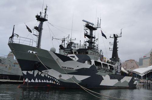 Sam Simon ,la nave finanziatas e donata da Sam,alla Sea Sheperd Conservation Society